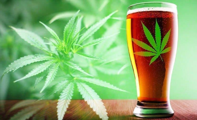 Marihuanalı Kolalar Yaygınlaşıyor